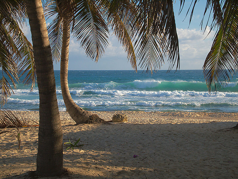 Une plage en été, le lieu idéal pour arborer un look sportif et surfer